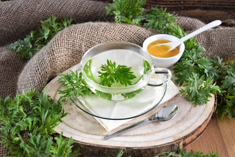 Artemisia annua-Einjähriger Beifuss Tee