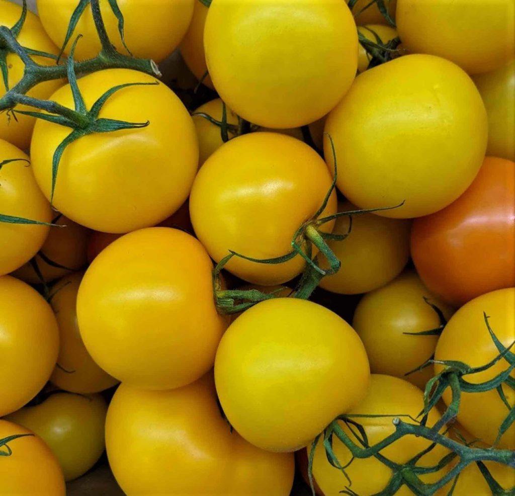 Vitamine sind lebenswichtig; sie erfahren, warum wir ohne sie nicht leben können, welche gesundheitlichen Vorteile sie haben und in welchen Lebensmitteln sie enthalten sind. - Gelbe Tomaten-Er&Ge
