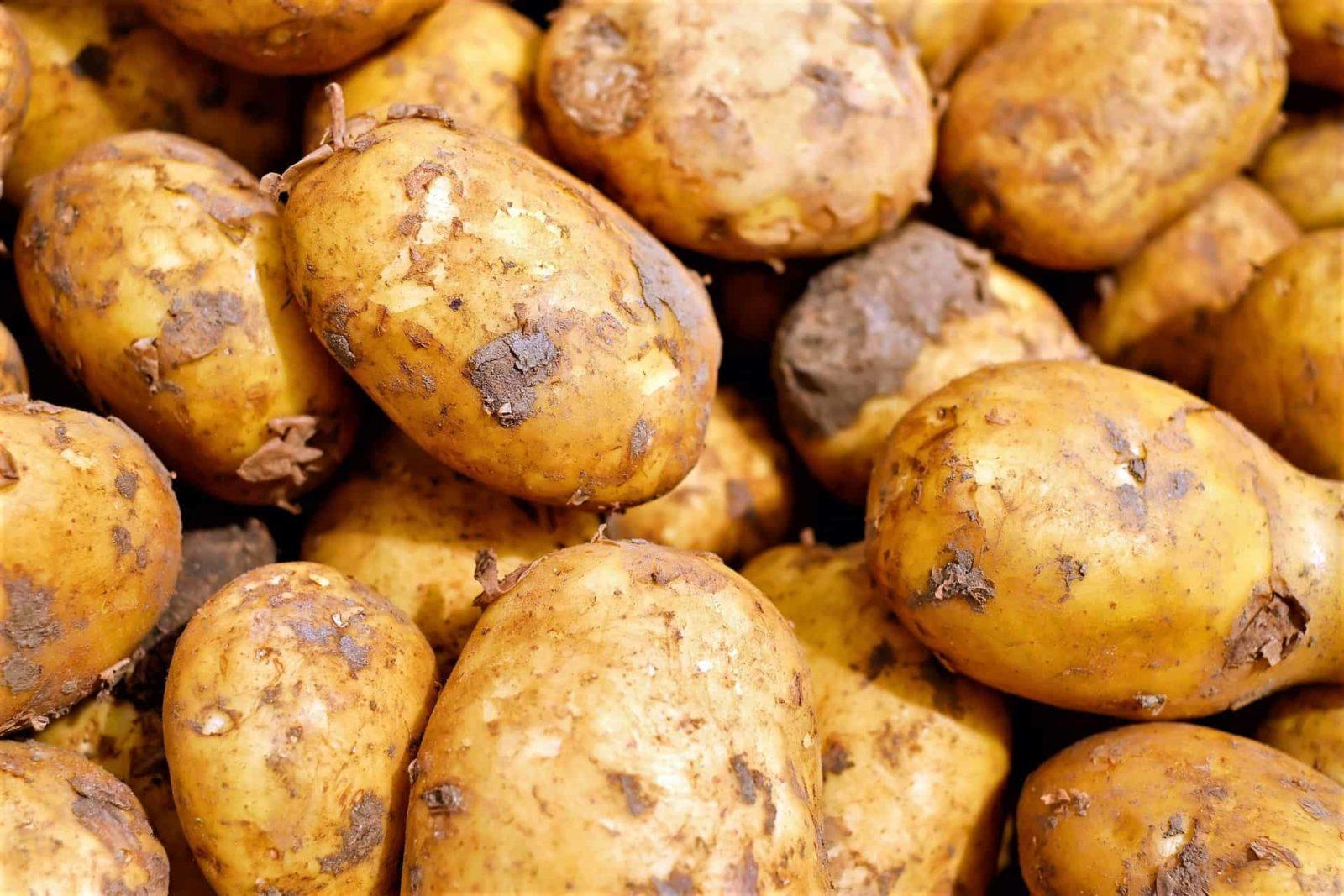 Kartoffel-eine gesunde Knolle-Titel - Er&Ge