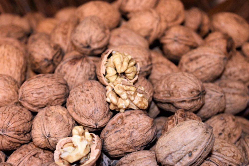 Die Walnuss-ein regionales Superfood der Extraklasse - Reife Nüsse
