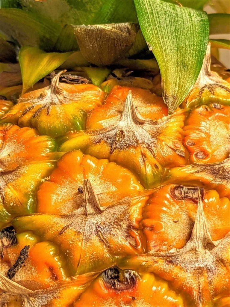 Ananas-eine heilkräftige Frucht-Nahaufnahme-BellsWelt