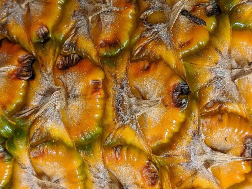 Ananas-eine heilkräftige Frucht-Schale-BellsWelt