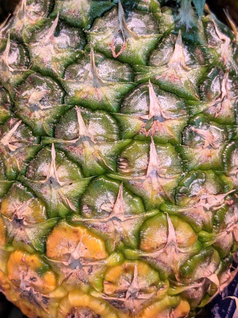 Ananas-eine heilkräftige Frucht-unreife Ananas-BellsWelt