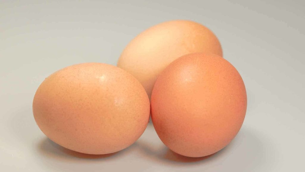 Eier sind gesund!-Braune Eier-BellsWelt