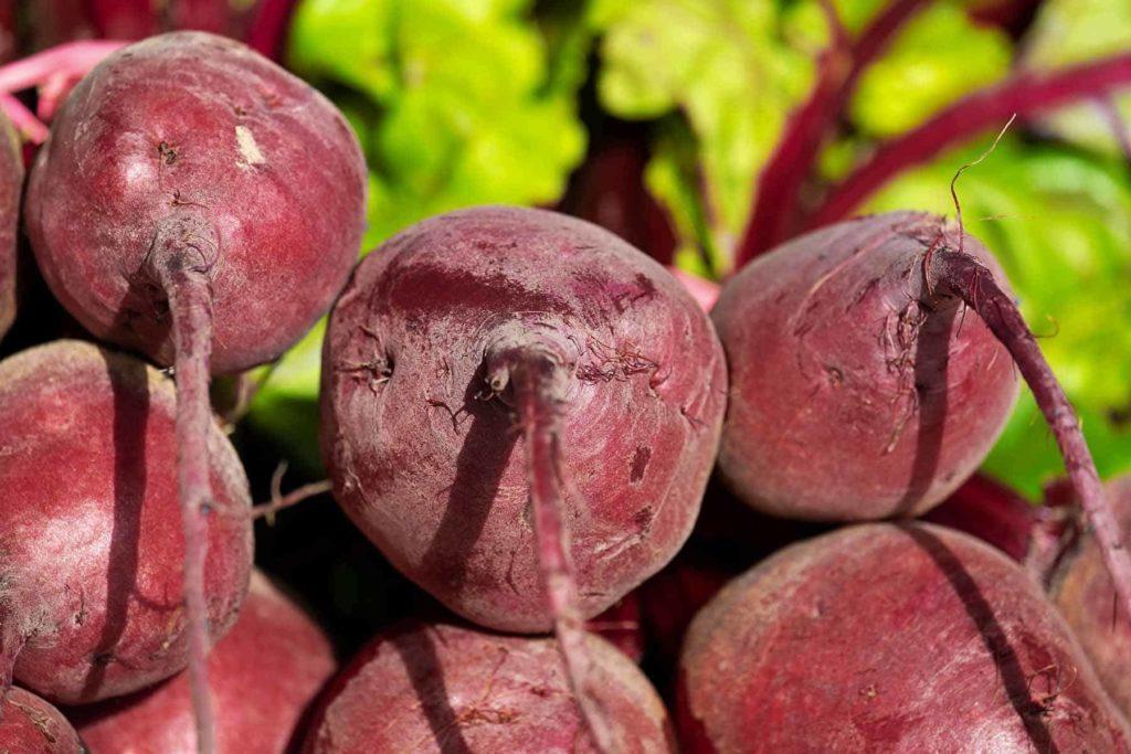 Rote Beete: Gut für den Blutdruck und die Verdauung -geerntete Beete-BellsWelt