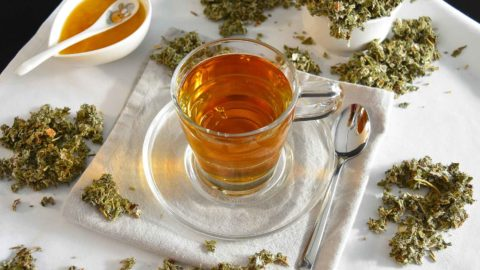Himbeeren - die Superfrüchte - Titel Himbeerblätter Tee BellsWelt