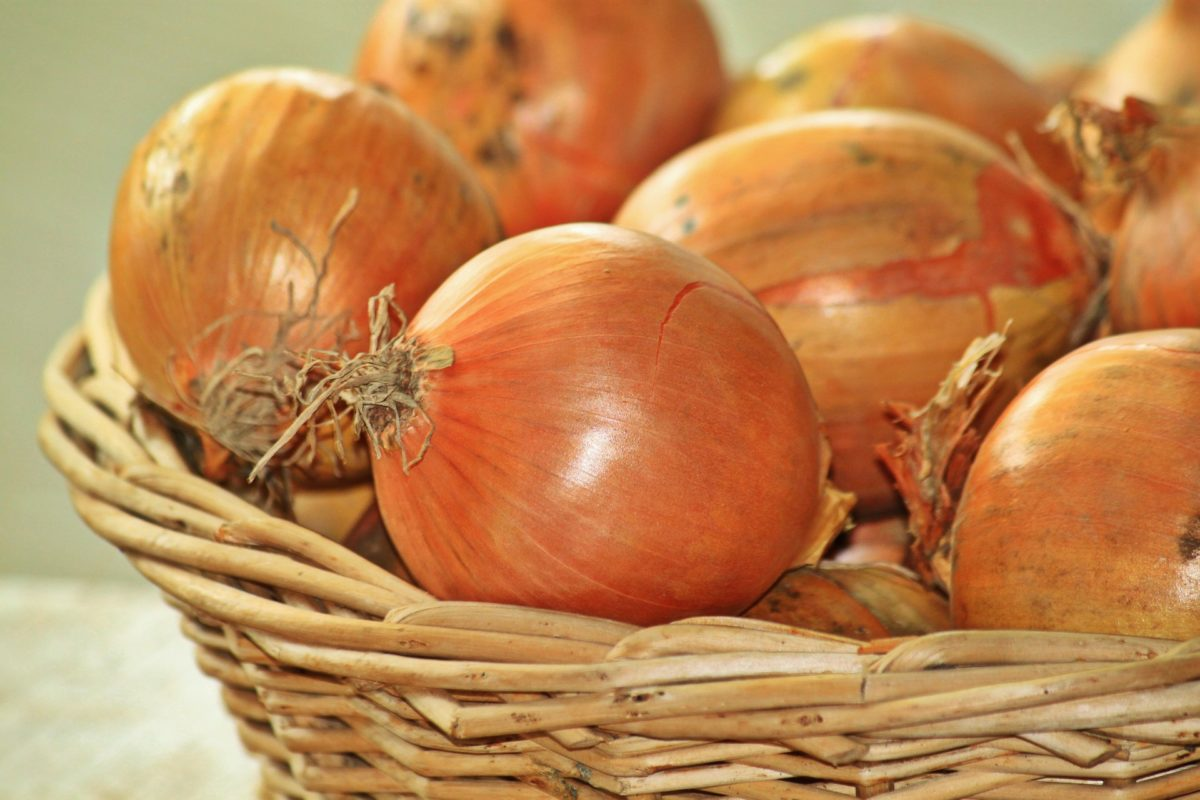 Zwiebeln-heilsames und gesundes Gemüse - Zwiebeln im Hofladen - BellsWelt