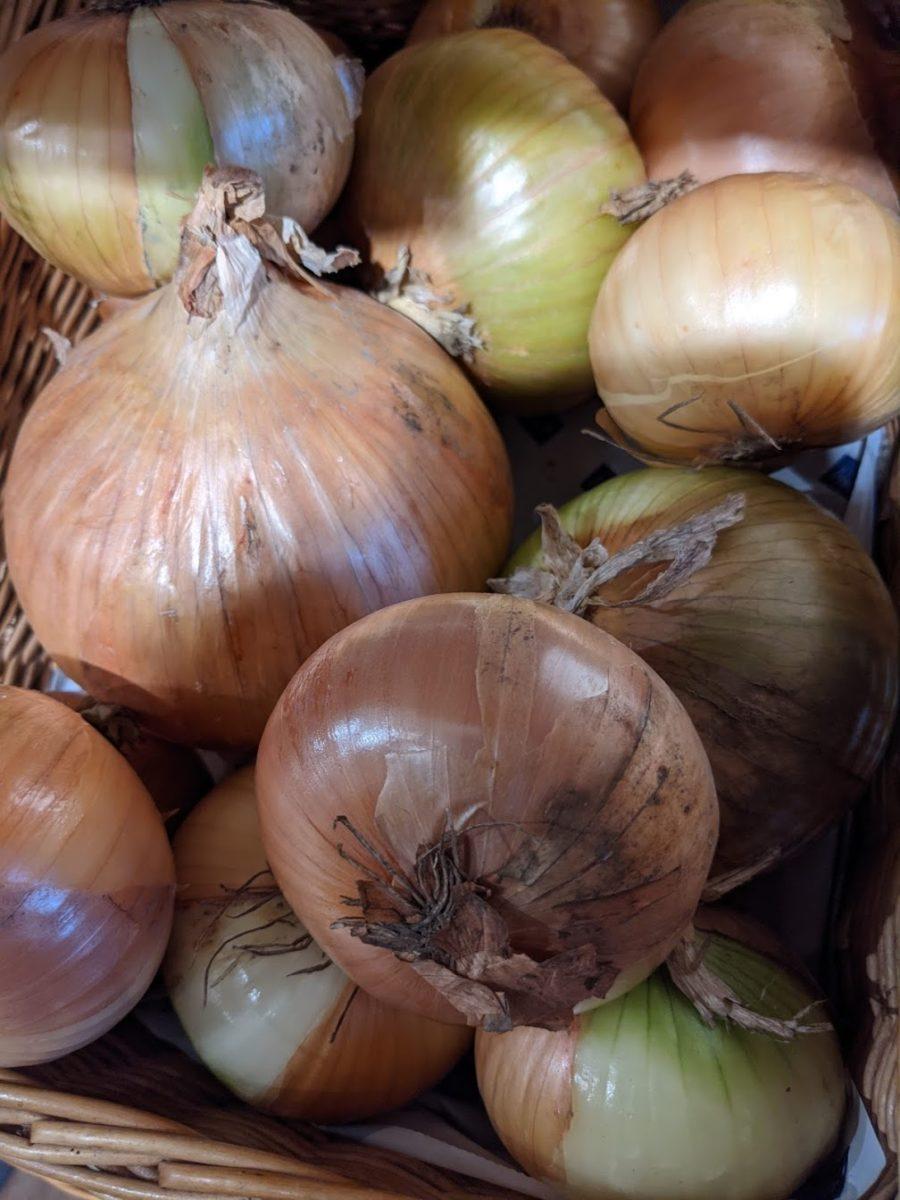 Zwiebeln-heilsames und gesundes Gemüse - Zwiebeln im Verkauf - BellsWelt