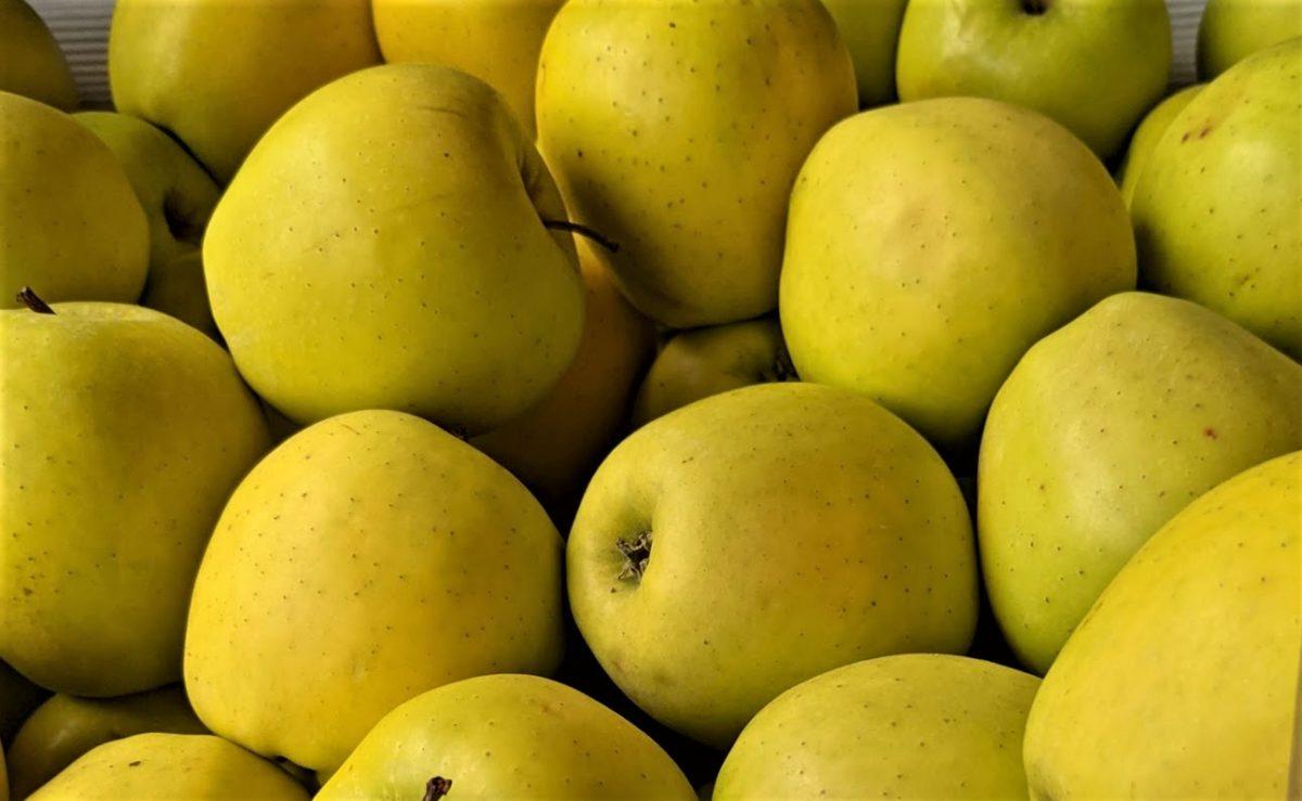Äpfel - gesund, knackig und lecker - Im Handel - BellsWelt