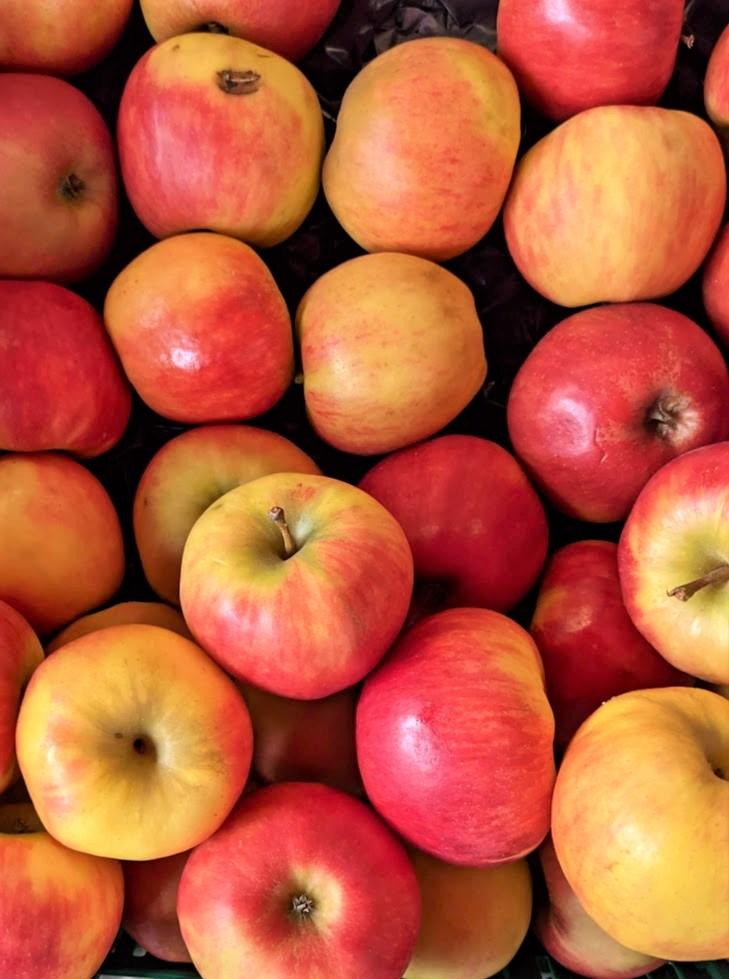 Äpfel - gesund, knackig und lecker - Im Verkauf - BellsWelt