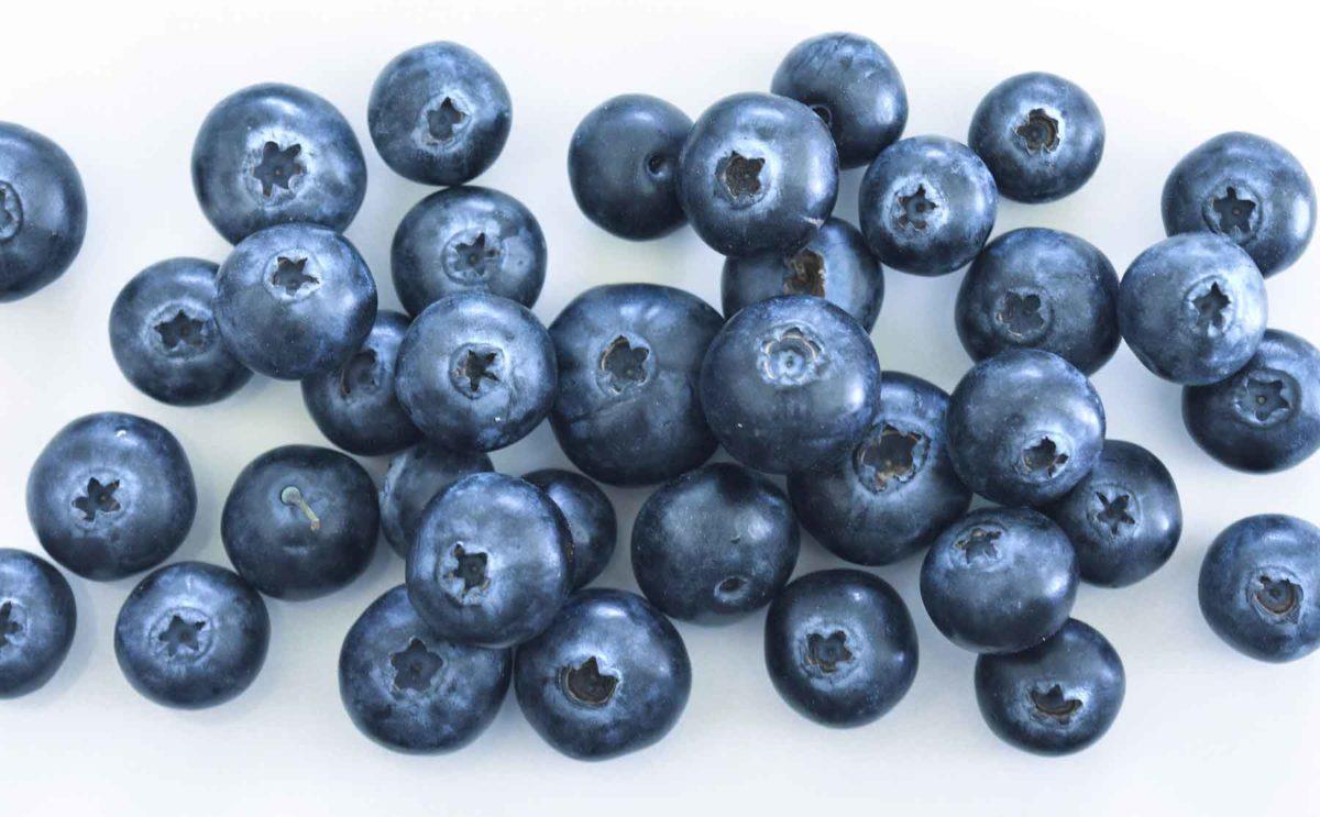 Heidelbeeren - eine gesunde Verführung - Blaubeeren- BellsWelt