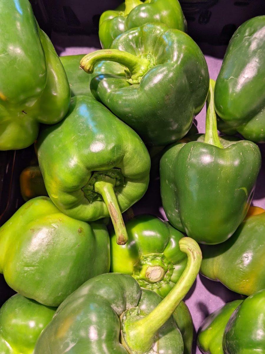 Paprika - die gesunde Schote-Grüne Paprika im Handel- BellsWelt
