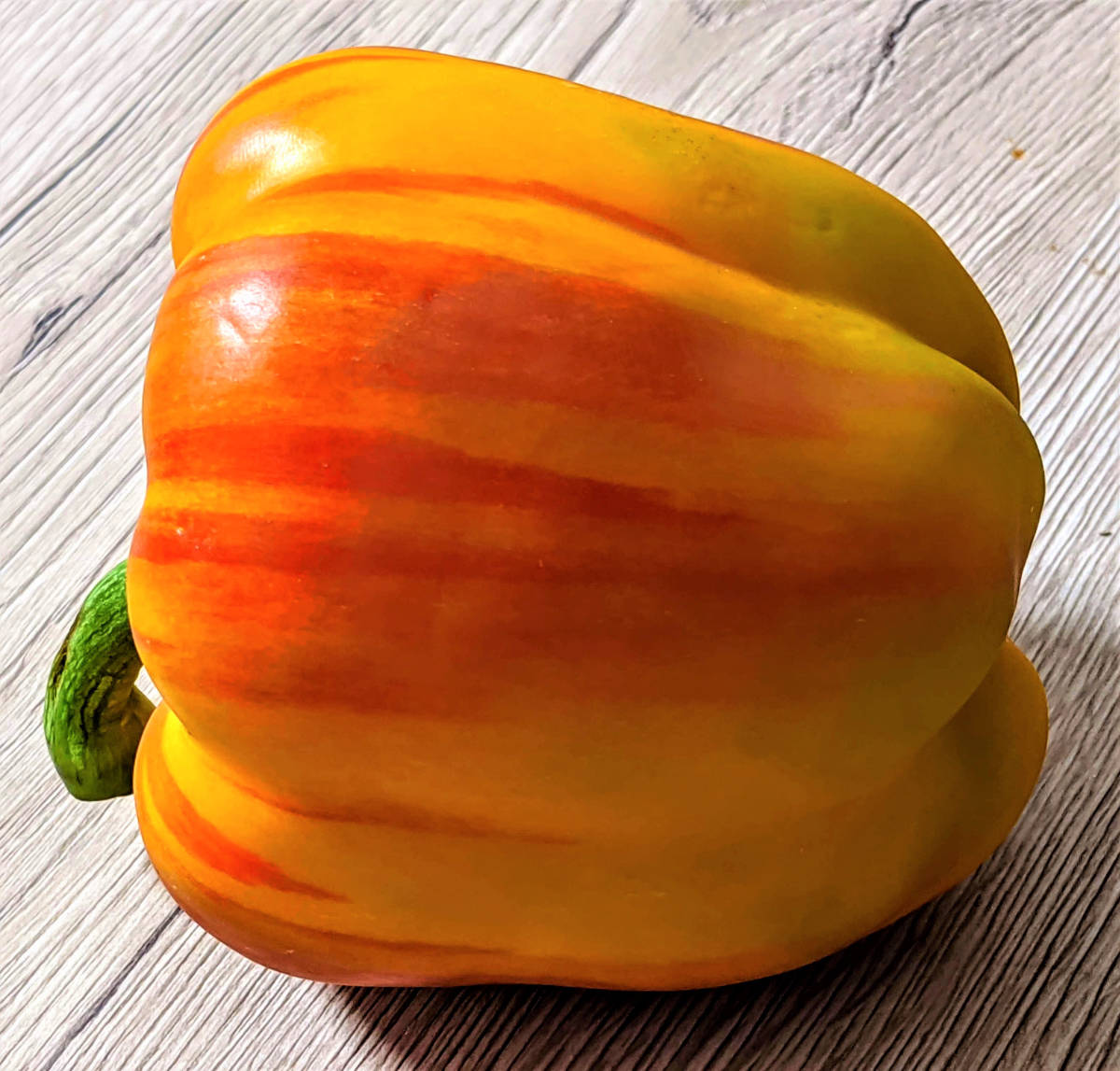 Paprika - die gesunde Schote-Neuzüchtung- BellsWelt