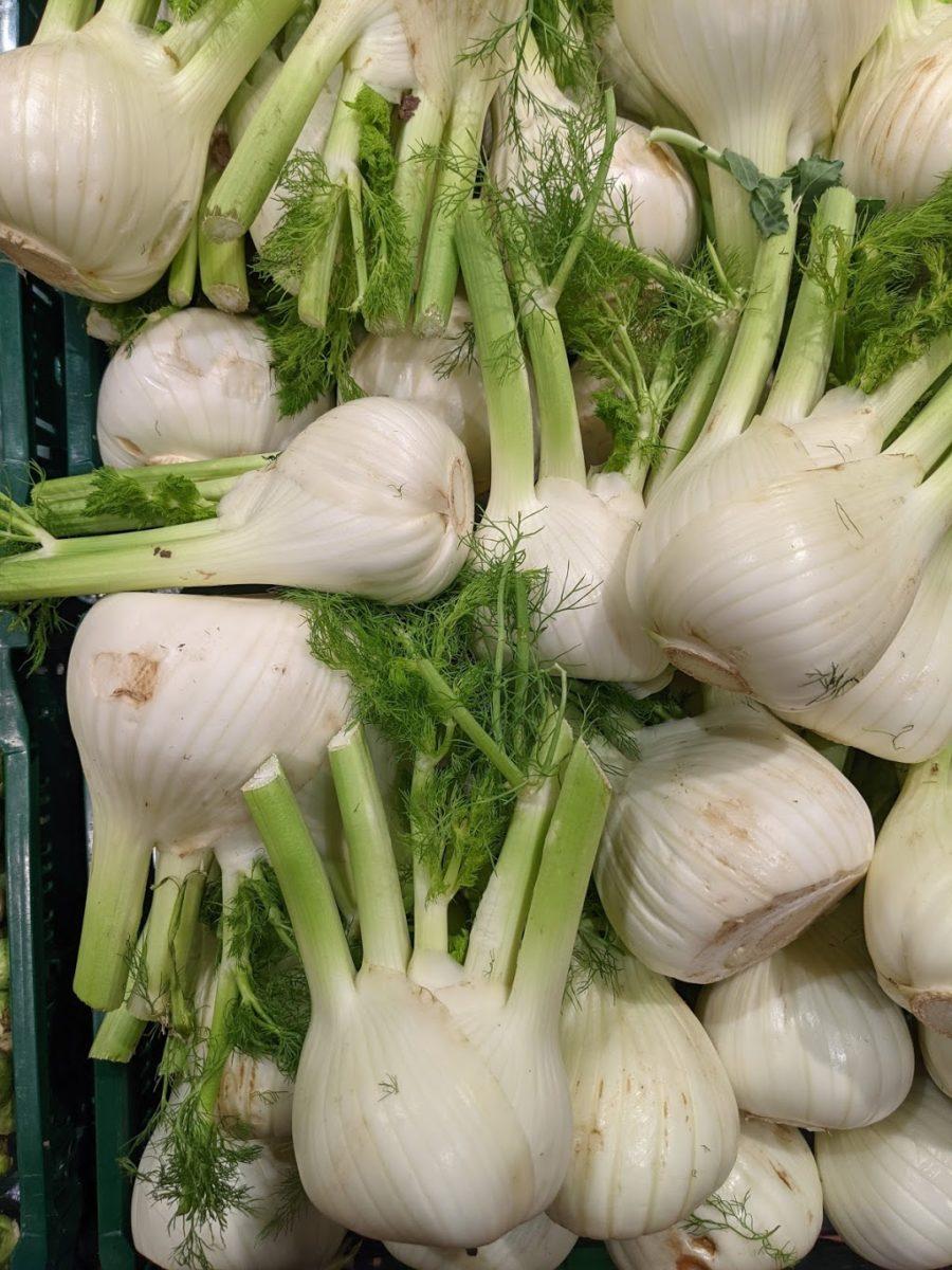 Fenchel – Heilpflanze, Gemüse und Gewürz- Fenchel im Verkauf - BellsWelt