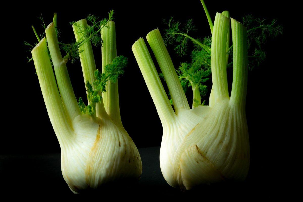 Fenchel – Heilpflanze, Gemüse und Gewürz- Fenchelknollen - BellsWelt