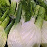 Fenchel – Heilpflanze, Gemüse und Gewürz- Titel - BellsWelt