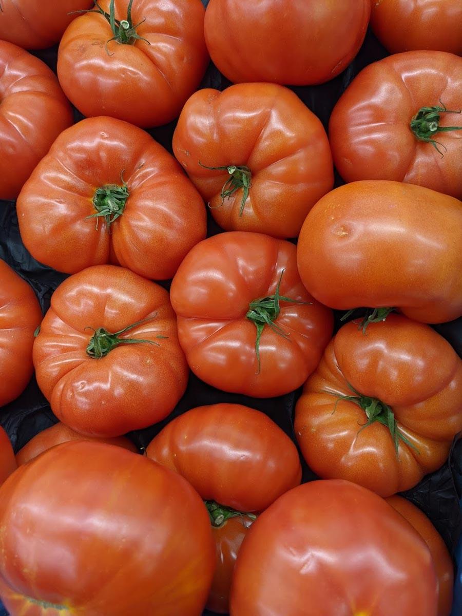 Powerfrucht Tomate - Fleischtomaten im Verkauf - BellsWelt