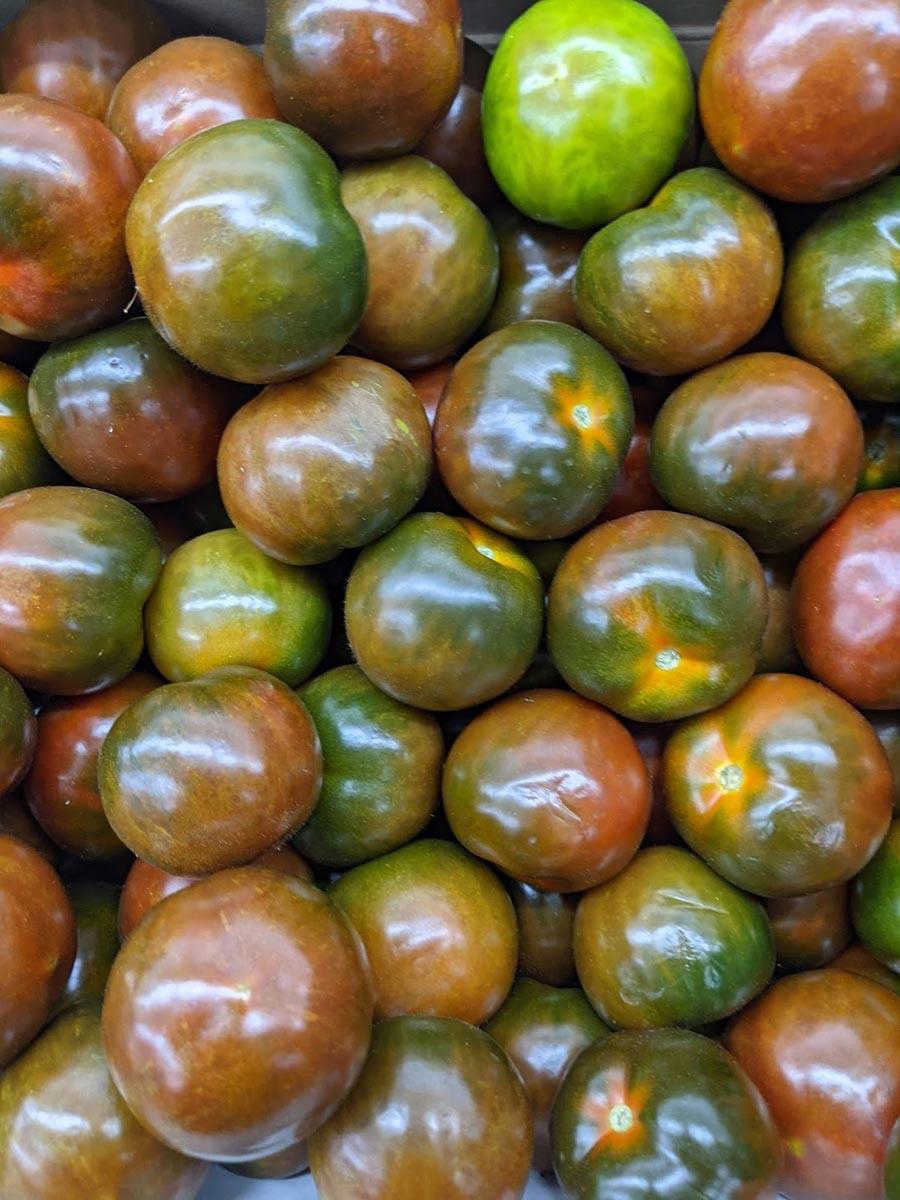Powerfrucht Tomate - Tomaten im Verkauf- BellsWelt