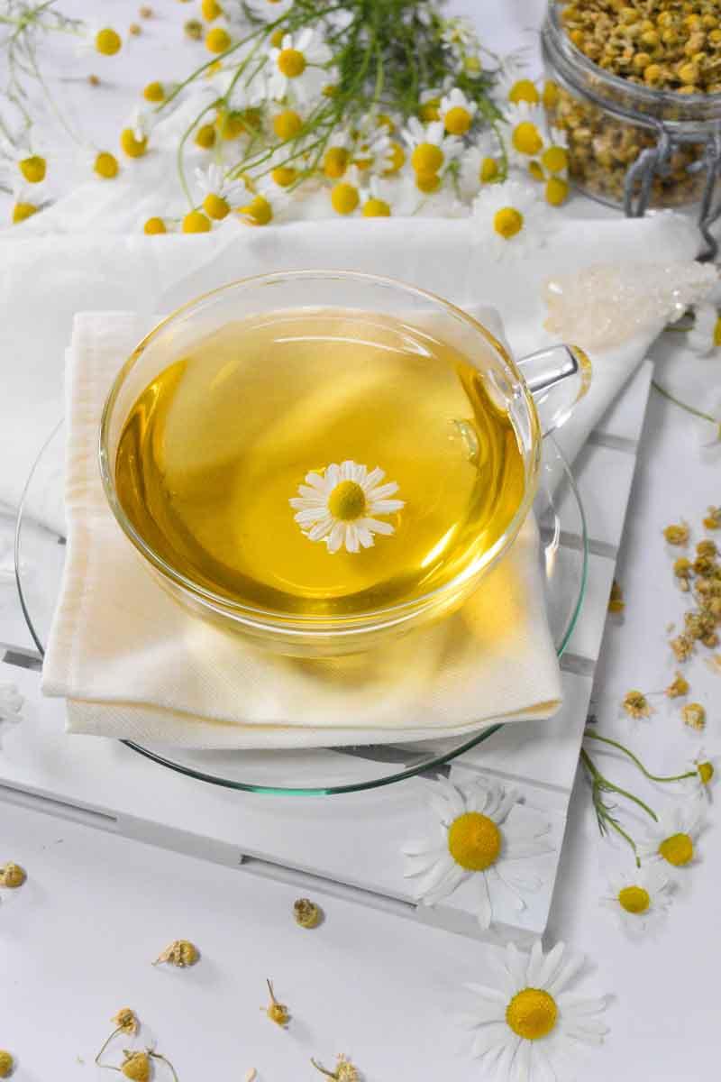 Kamillentee – das Getränk für unsere Gesundheit - Kamillentee- BellsWelt