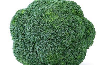 Brokkoli – grünes Heilmittel Titel - BellsWelt