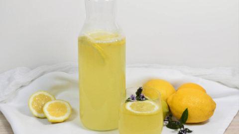 Zitronen – sauer macht lustig und gesund - Anrichten - BellsWelt