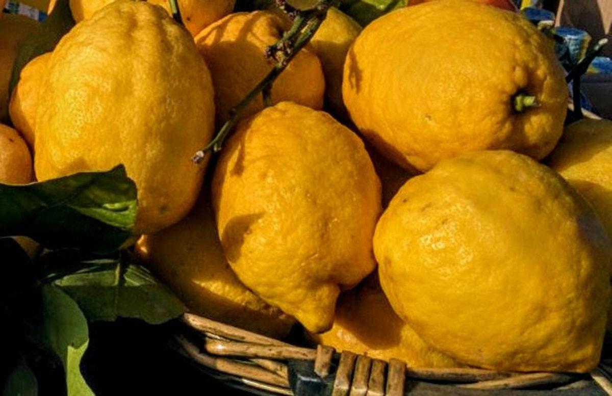 Zitronen – sauer macht lustig und gesund - Zitronen im Verkauf - BellsWelt