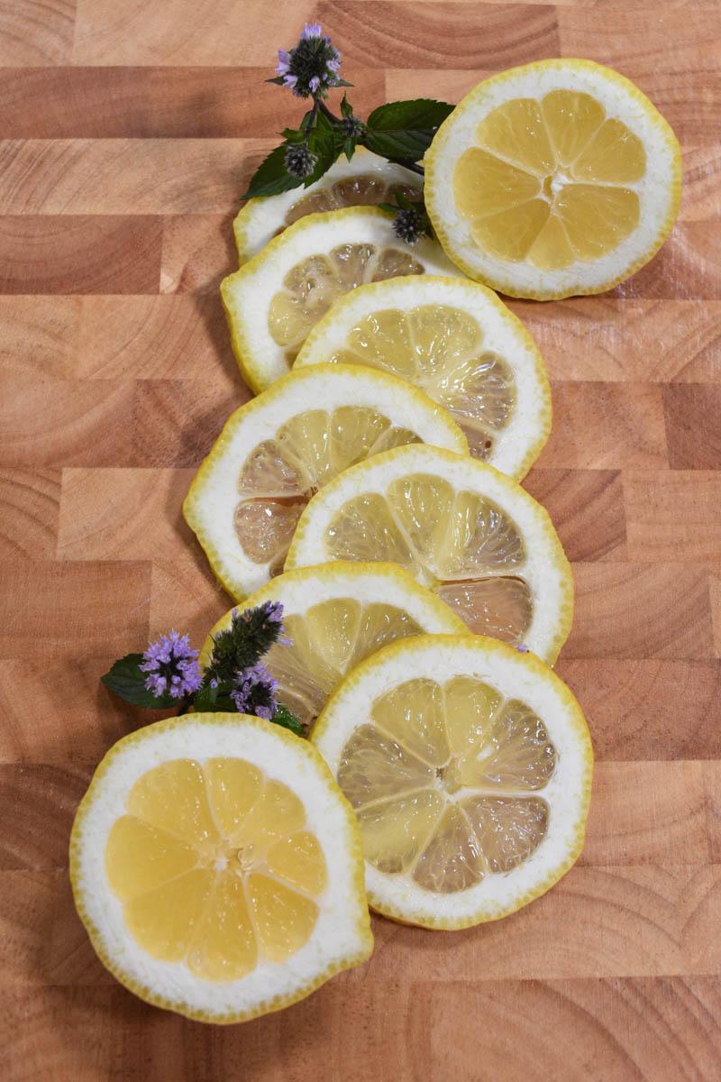 Zitronen – sauer macht lustig und gesund - Zitronenscheiben - BellsWelt