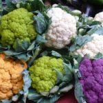 Pflanzenbasierte Ernährung - Titel - BellsWelt