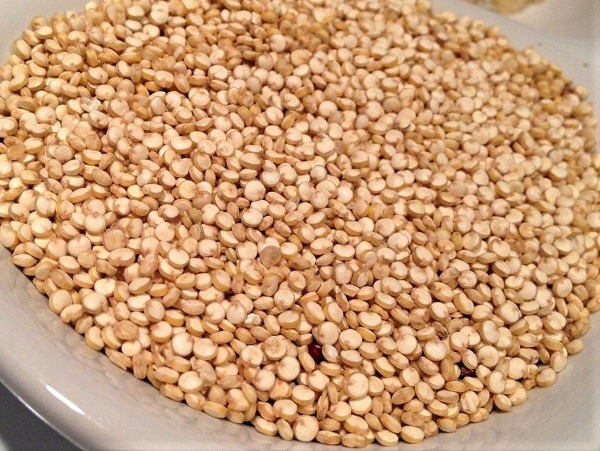 Quinoa – so gesund ist der Andenreis - weißer Quinoa- BellsWelt